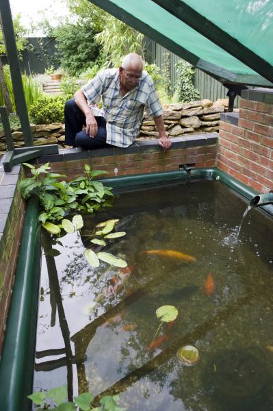 Magazine les poissons de bassin - Bassin poisson rouge sans filtre roubaix ...